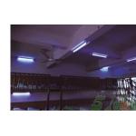 临平第二幼儿园老师用紫外线光惩罚孩子 园方还包庇老师