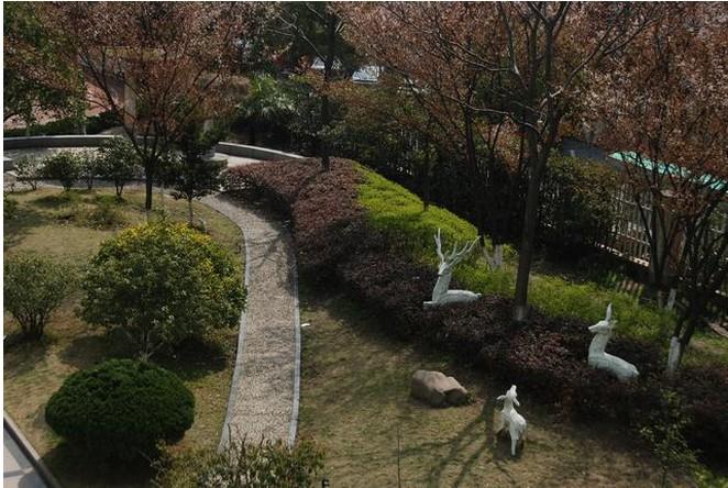 春芽实验学校3.jpg
