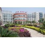 武汉市红领巾学校照片