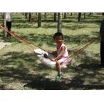 大通县中心幼儿园相册