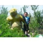 滨州小营中心幼儿园