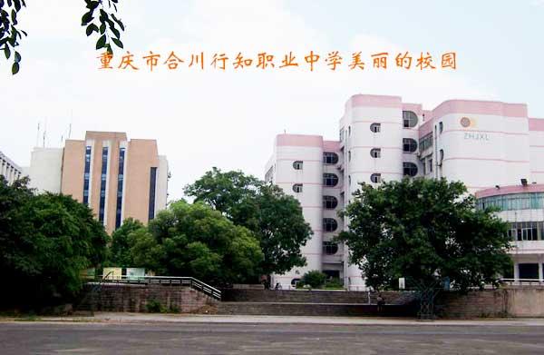 重庆市合川行知职业中学相册