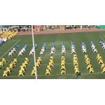 贵州市第二实验小学(贵阳实验二小)