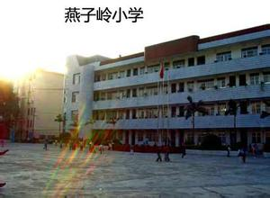 南宁市燕子岭小学学校简介 我要搜学网图片