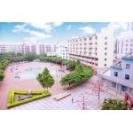 深圳龙华中英文实验学校照片