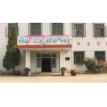 天津市东丽区杜庄中心小学