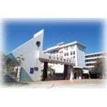 厦门槟榔中学