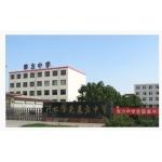 隆尧县私立表方中学