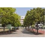 温州市平阳县新鳌高级中学