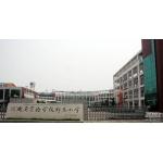 河南省实验学校郑东小学