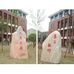 武汉经济技术开发区洪山小学