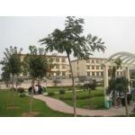 青州市实验中学