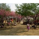 北京市监狱管理局幼儿园