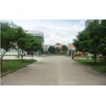 阳江市第一幼儿园