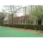 天津大学幼儿园