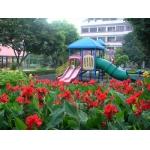 广州市第一幼儿园(市第一幼儿园)