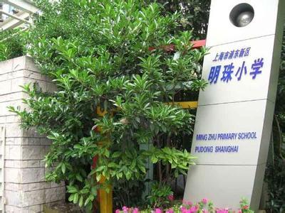 上海市明珠小学相册