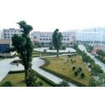 长沙麓山国际实验学校