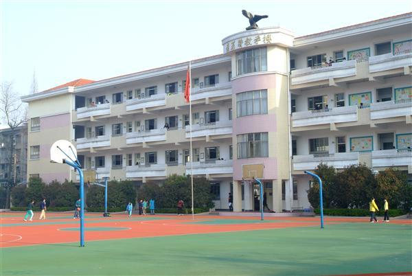 杭州市求是小学相册