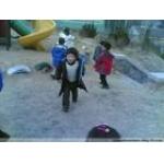 丑小鸭幼儿园