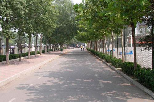 天津中德职业技术学院相册