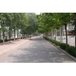 天津中德职业技术学院