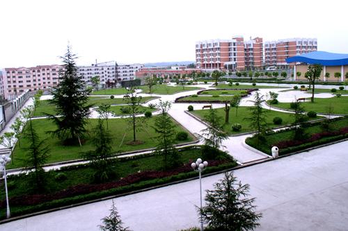 2015重庆巴川中学中考成绩-2015重庆中考