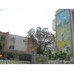 广州市南沙中心幼儿园