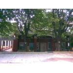 广州市思媛幼儿园