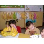 新太阳幼稚园