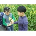 芜湖市启明星幼儿园