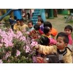 莆田县妇联育新幼儿园