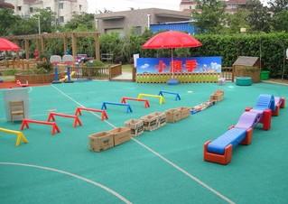 上海市徐汇区紫薇实验幼儿园相册
