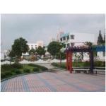 平湖市新埭镇中心幼儿园相册