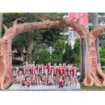 深圳市富源幼儿园相册