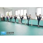 北京艺海星图艺术培训学校