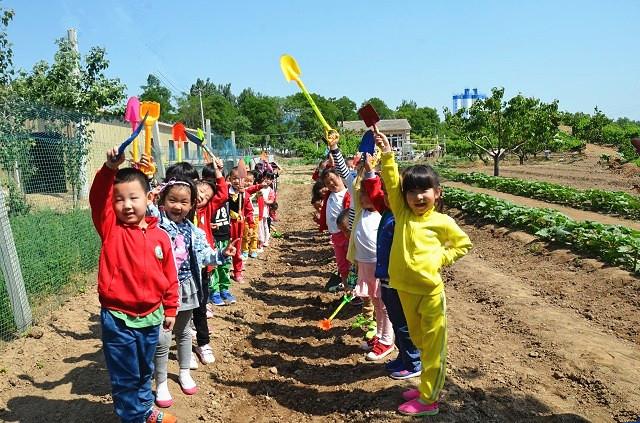 安次区第二实验幼儿园照片3
